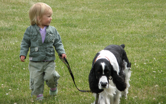 little Girl Walking Dog